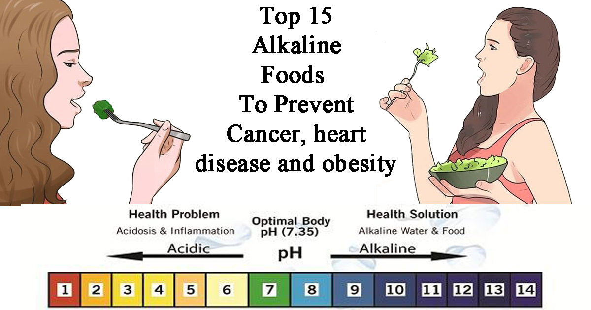 What Are The Best Alkaline Foods