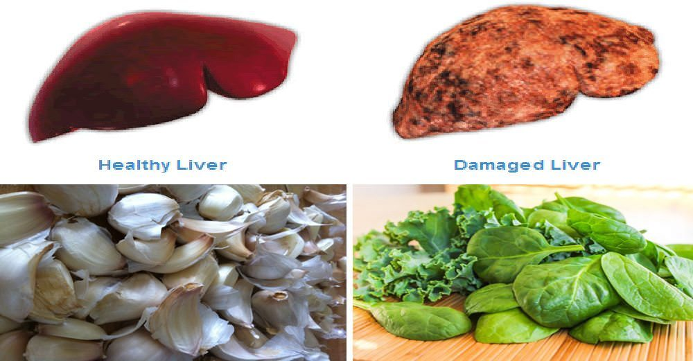 Foods That Help Promote A Healthy Liver